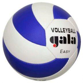 Мяч волейбольный Gala Easy BV5083SC