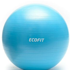 Мяч для фитнеса Ecofit MD1225 65см/1100 гр