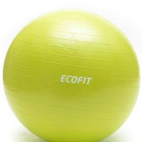 Мяч для фитнеса Ecofit MD1225 75см/1300 гр