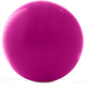 Гимнастический мяч ProForm