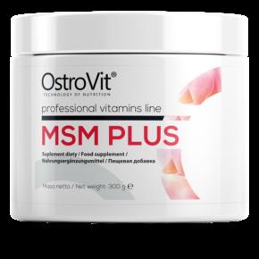 MSM Plus — 300g Natural